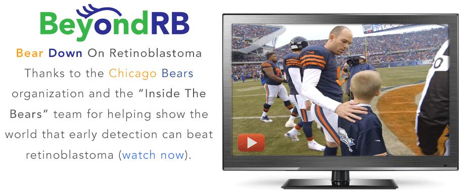 Banner-Inside-bears